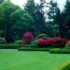 Hiring a Landscape Contractor, Find the Right One for Your Yard